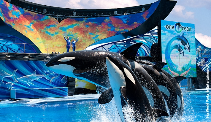 Sea World Parks & Entertainment
